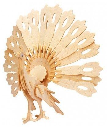 Paw (Peafowl)